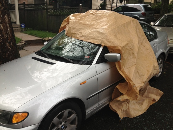 tarp covering car